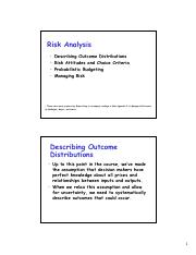 Risk Analysis.pdf