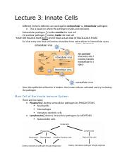 Lecture 3 Innate Cells