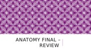 FINAL REVIEW - Everything Shaeffer wants you to know for the final