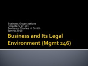 Mgmt 246 Business Organizations Powerpoint slides (Smith)