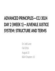 CHP- 13 Juvenile Justice System (Shell Slides).pptx
