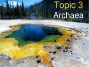 Topic 3 Archaea_for students