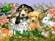 french_animals