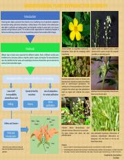 Plant Reproductive Diversity Updated (Anya:Troy).pptx