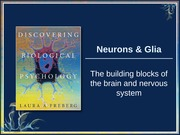 BFP Lecture 2 - The Neuron
