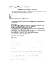 POS433r2_file_processing_commands_worksheet.doc