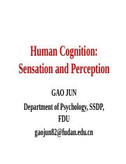 4-5 Human Cognition-sesation and perception
