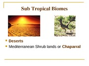 Ecology Sutropical Temperate Boreal