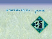 Chapter 31 - Monetary Policy