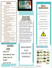 AshleyWilliams NS305 unit 2 assignment trifold Ciguatera fish poisoning.docx
