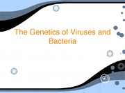 Viruses_and_Bacteria