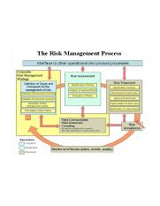 The_Risk_Management_Process.png
