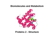 Biomolecules Lecture_2_Proteins