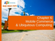 Chapter 6_Mobile Commerce