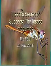2 - Insect Integument.pdf