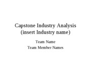 Capstone Industry Analysis