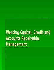 Working Capital  Cash Holding-2.ppt
