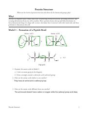 Peptide bonds Carboxyl and amine groups Nope Module 2 ...