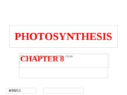 Chapter 8 - Photosynthesis