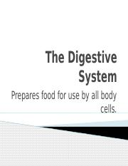 30 3 Student Wb Doc Name Class Date 30 3 The Digestive System