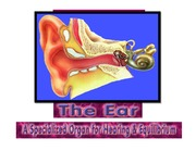 the-ear-12ppt