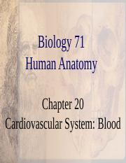 Chapter 20 Blood.ppt
