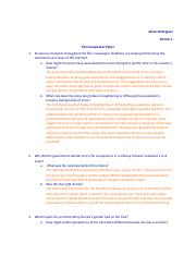 The_conspirator_questions.docx.pdf