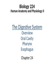 Lecture 15 - Digestion 1