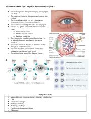Assessment of the Eye – Physical Assessment Chapter 7.docx