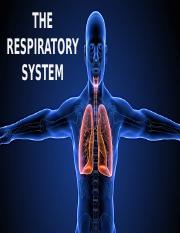 Respiratory System Lecture I