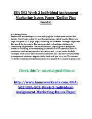 BSA 502 Week 2 Individual Assignment Marketing Issues Paper.doc