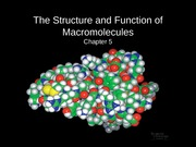 Chapter 5, Structure and Function of Macromolecules