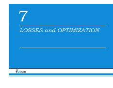 7_LossesOptimization_2013.pdf