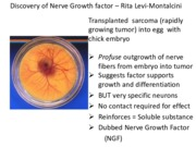 Lecture 6 - 11-18-15 Neural development, growth factors and neurotrophins part 2