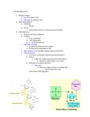 Cell membrane and Tonicity Worksheet - NAME DATE PERIOD Cell ...