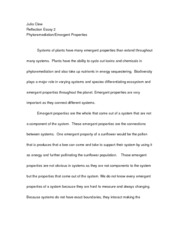 Phytoremediation Reflection Essay 2