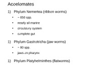 7 Platyhelminthes_1_online