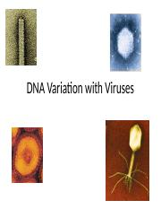 Lecture 6.1 - DNA variation with Viruses
