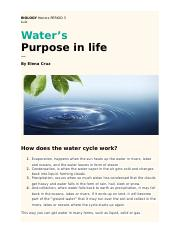 the water cycle study resources 2 pages essay
