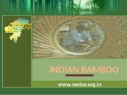 288304528-Indian-Bamboo-Nectar-org-in