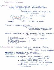 Organelles and Tissue1.pdf