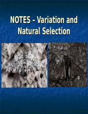 notes-variation-and-natural-selection.ppt