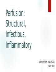 Perfusion - Structural - Student (1).pptx