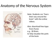 Neuroanatomy S'16 for BB(1)