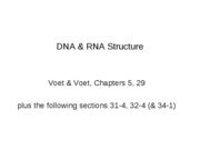 4.Nucleic Acid Structure