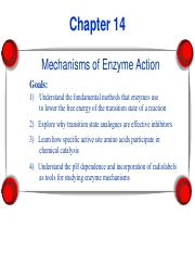 Chapter 14 Enzyme Mechanism(1).pdf
