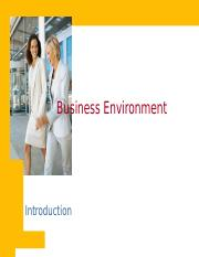 3. Business Environment.ppt
