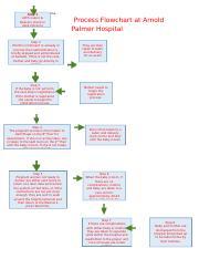 process analysis at arnold palmer hospital