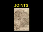ANP 300 - Lecture 6 - Joints