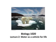 Lecture 2 water as vehicle for life
